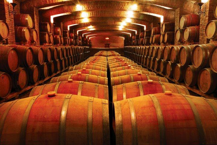 Private Valparaiso Port Pre-Post Cruise Santiago City Tour and Undurraga Winery