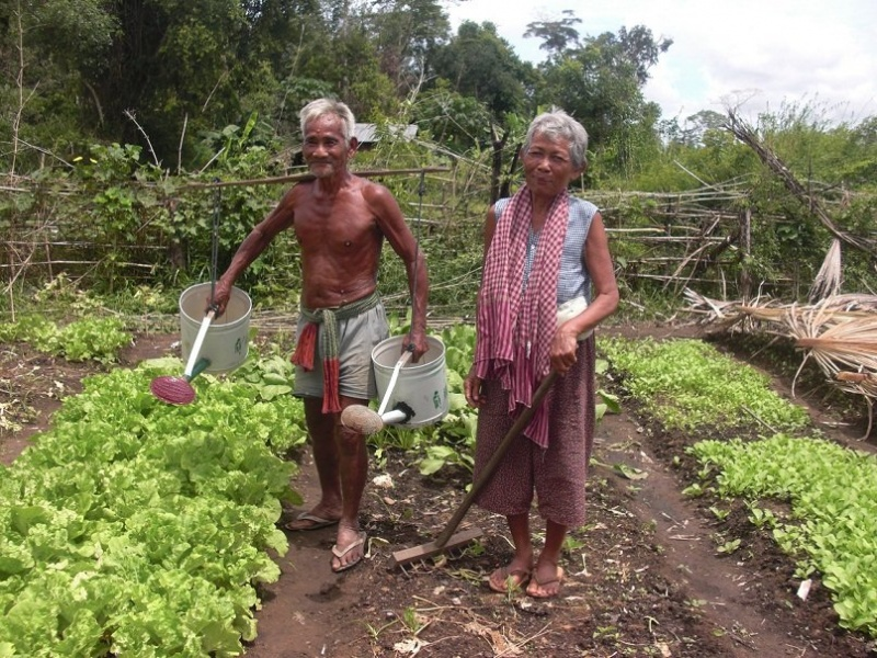 Half Day Culinary Cambodia - Siem Reap