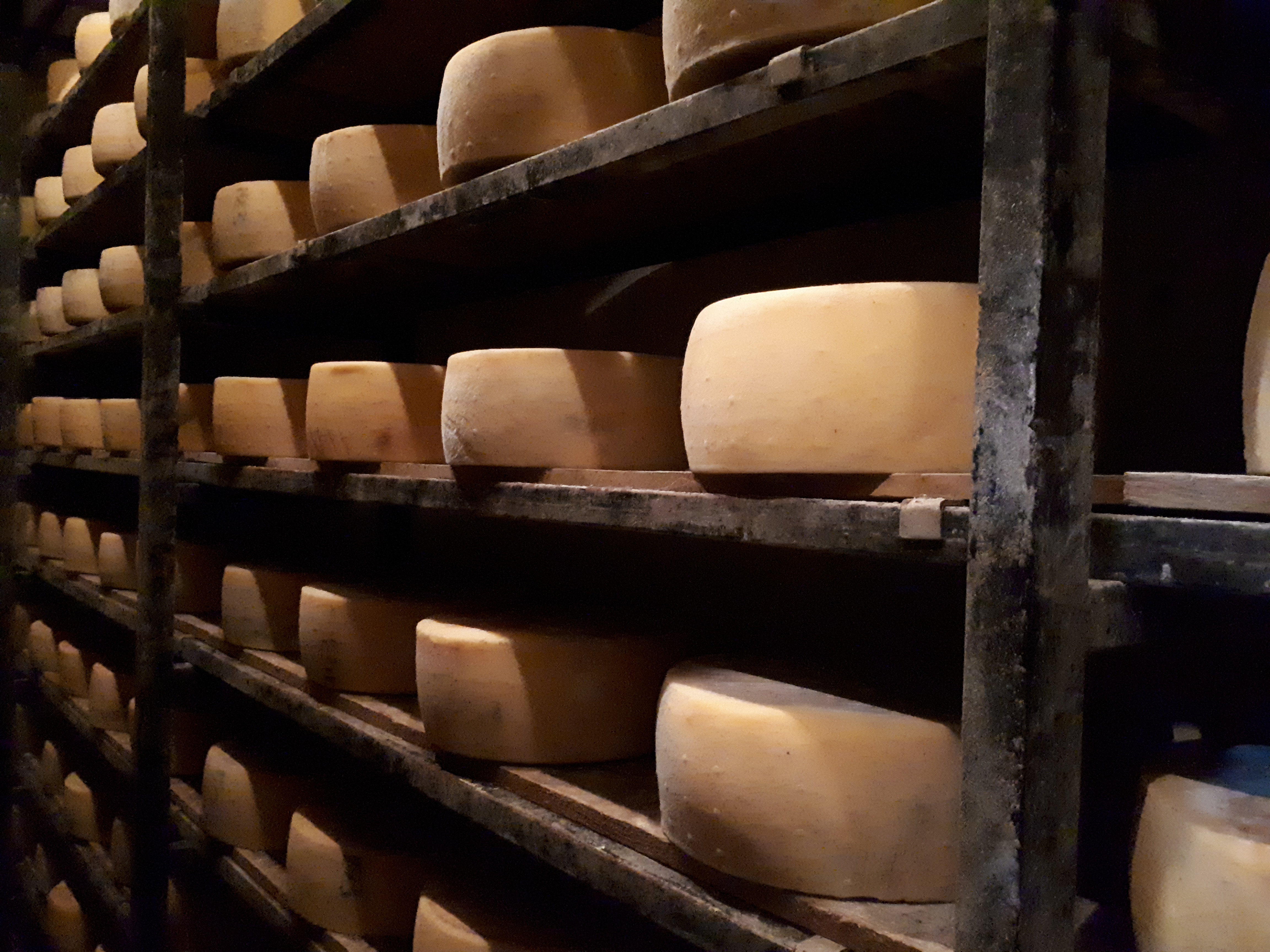 Explore the Cretan Wines and Cheese-Making Process