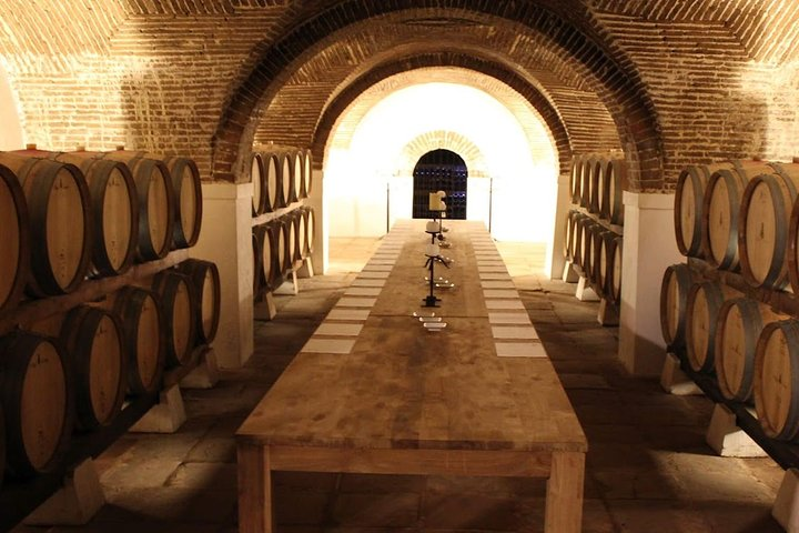 Private Tour Wine (region Évora) Wine Tasting
