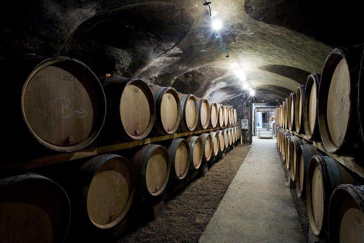 Unique Burgundy Wine Tour from PARIS (1 day)