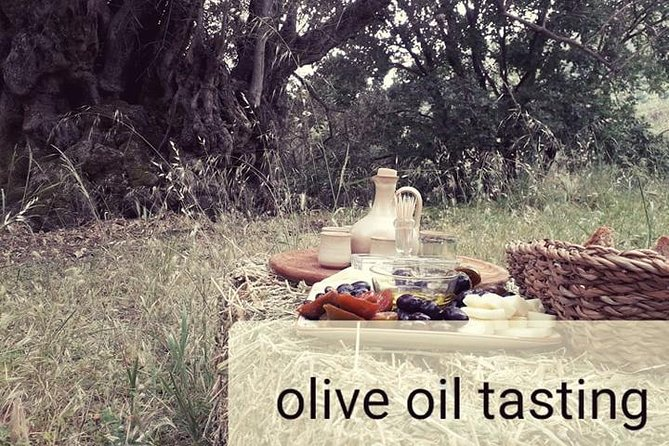 Private Olive Oil Tasting in Crete in the Olive Grove (outdoor)