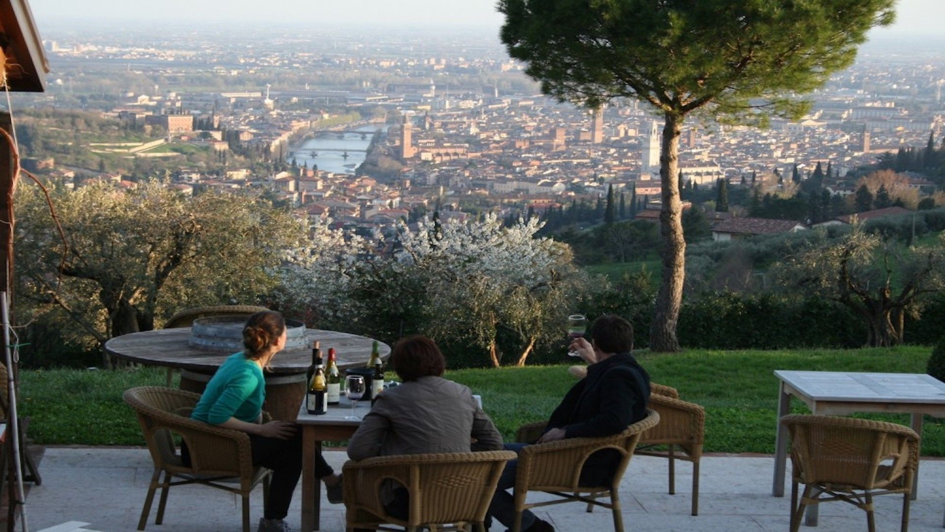Verona full immersion wine tour