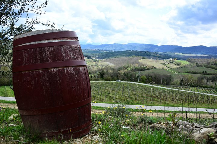 Exclusive Chianti Classico Day Trip