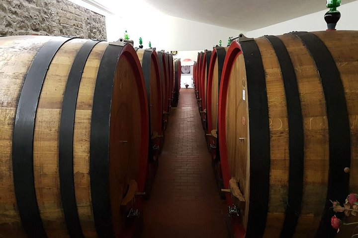 Tasting of the noble wine of Montepulciano, visiting Pienza, from Rome