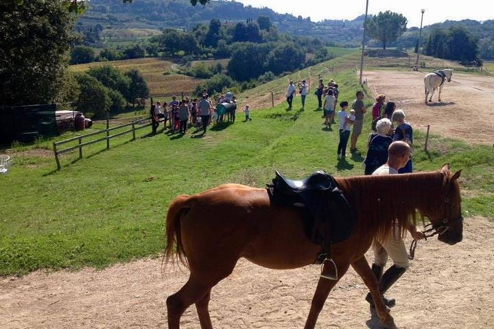 Wine tasting and horseback riding in Montepulciano, in Tuscany from Rome