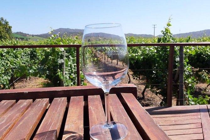 Private half day wine tour , concha y toro
