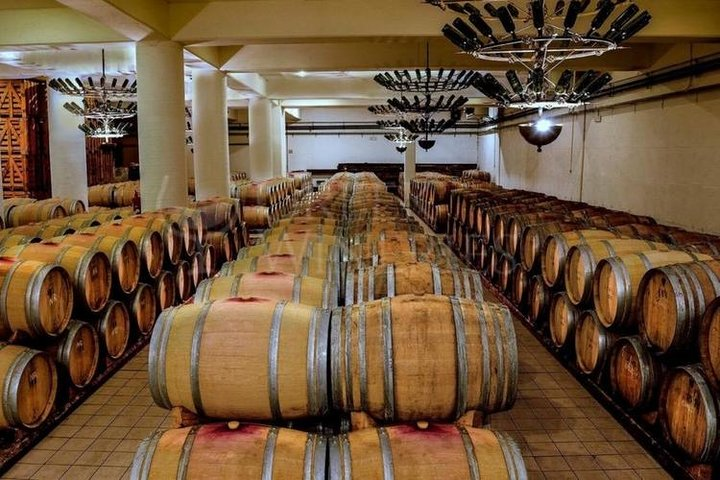Private Tour: Winery Day Trip from Costa Navarino with Food and Wine Tastings