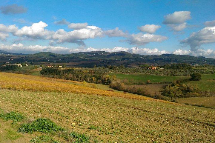 Unconventional Chianti Hills Hiking and Wine Tasting