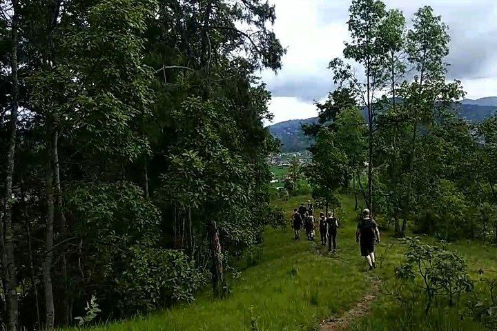 Hike along the trails