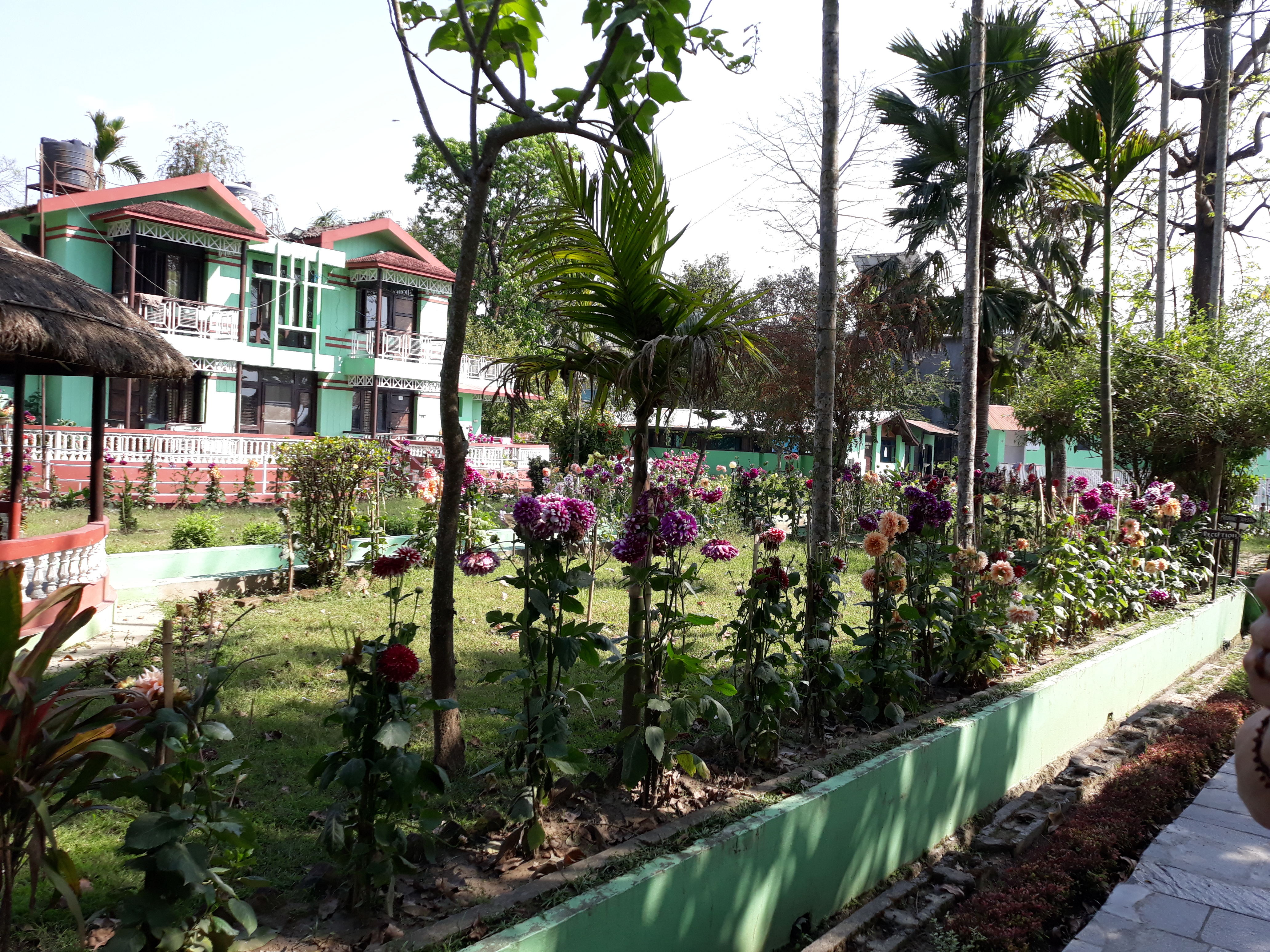 Stay in comfort at Chitwan