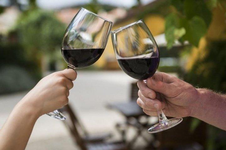 Wine Tasting - Private Half-Day Tour