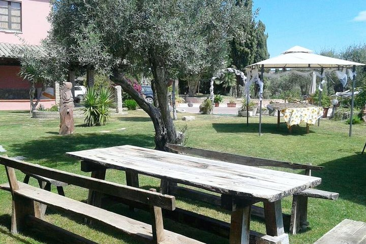 Cagliari: Full Day Wine Experience Private Tour with Lunch
