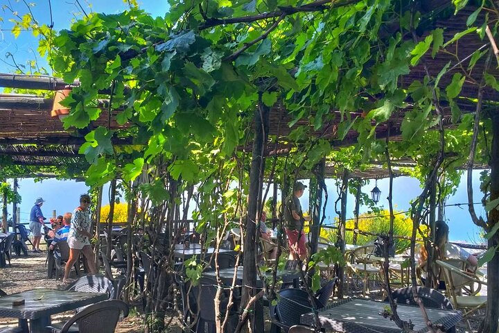 Vesuvius with Wine Tasting and lunch included from Naples