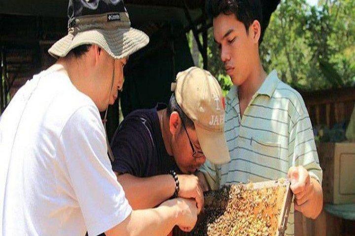 Mekong Delta : Top Site Must Visit 2 Days 1 Nights