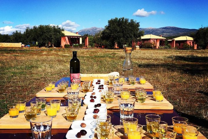 Olive oil tasting and Wine tasting in Laconia, Greece!