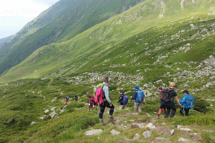 Enjoy hiking in stunning environment