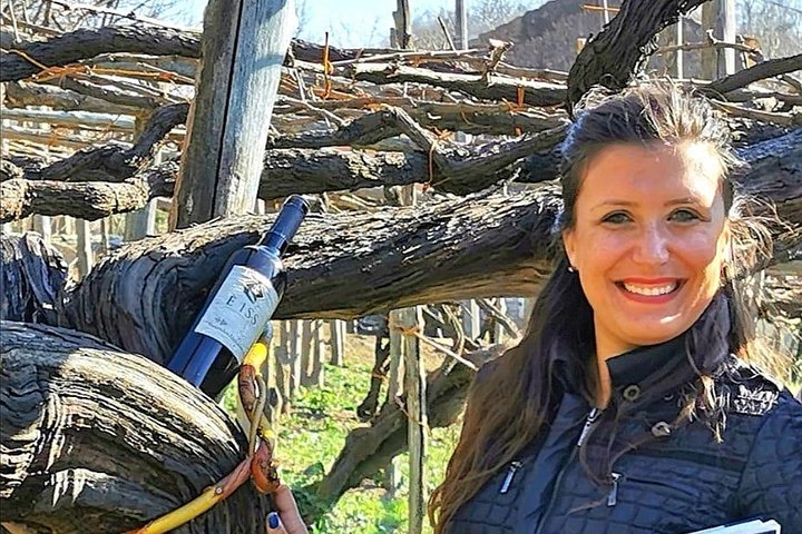 Wine experience in a pre-philloxera Winery in Amalfi Coast!