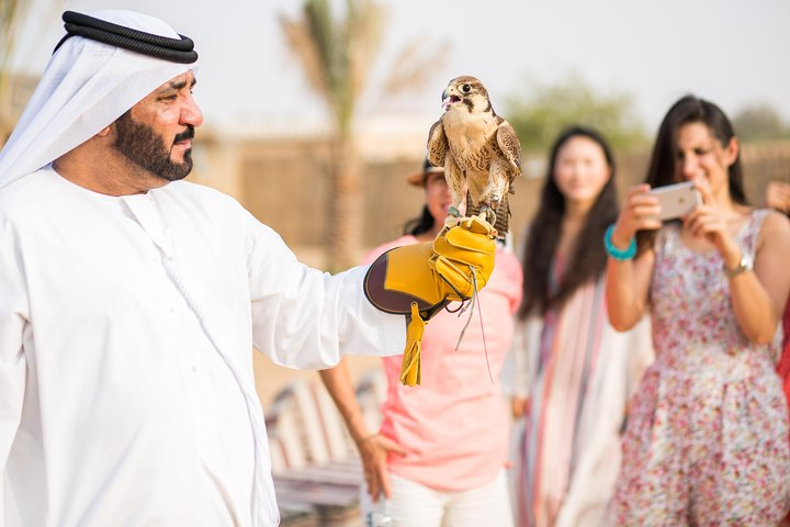 Deluxe Hot Air Balloon Ride With Gourmet Breakfast & Falcons