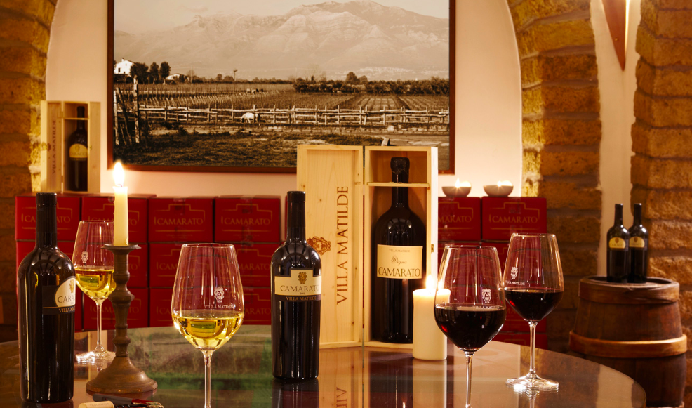 Exclusive wine tasting experience close to Naples
