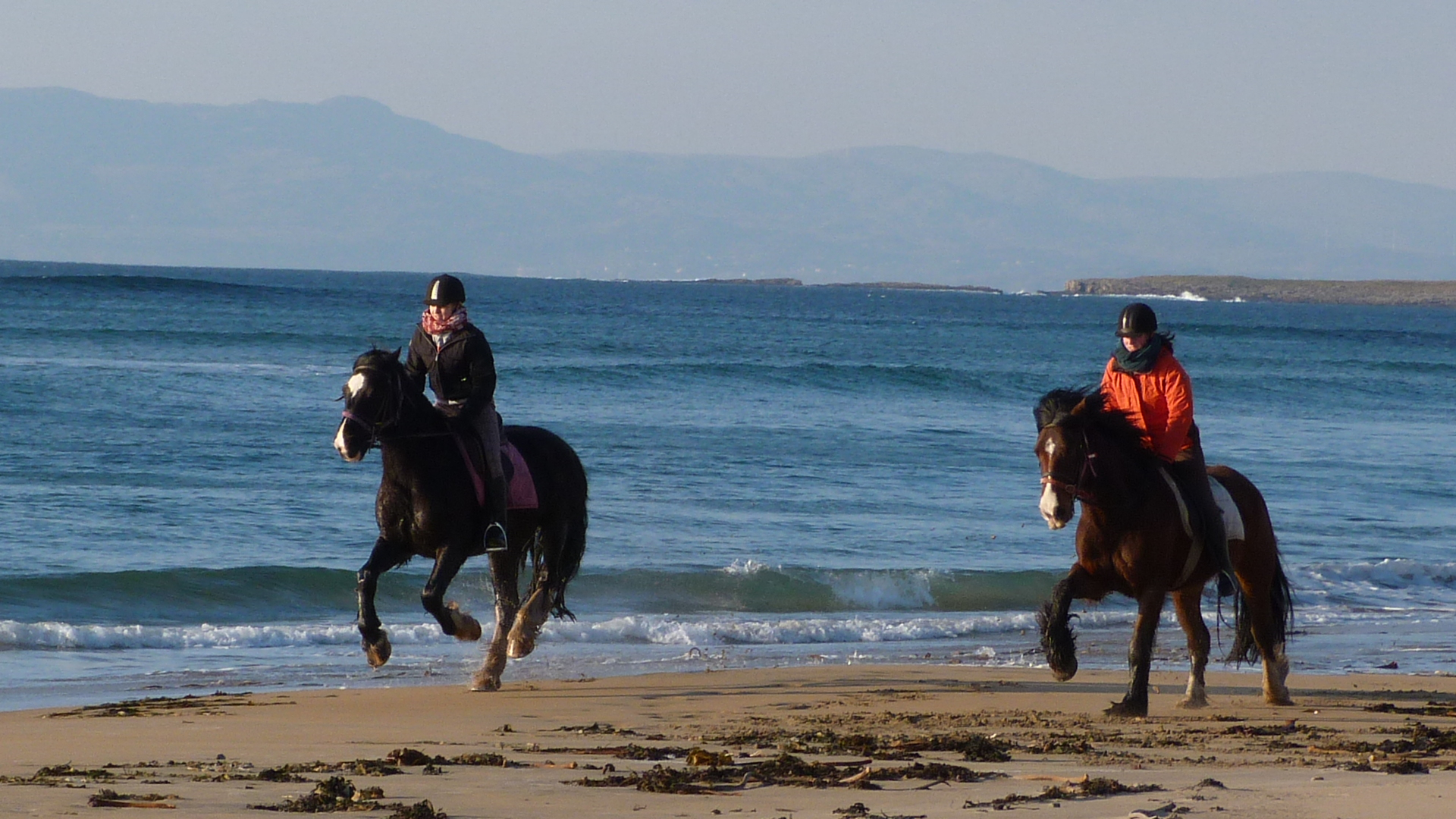 Enjoy horse riding on the beach