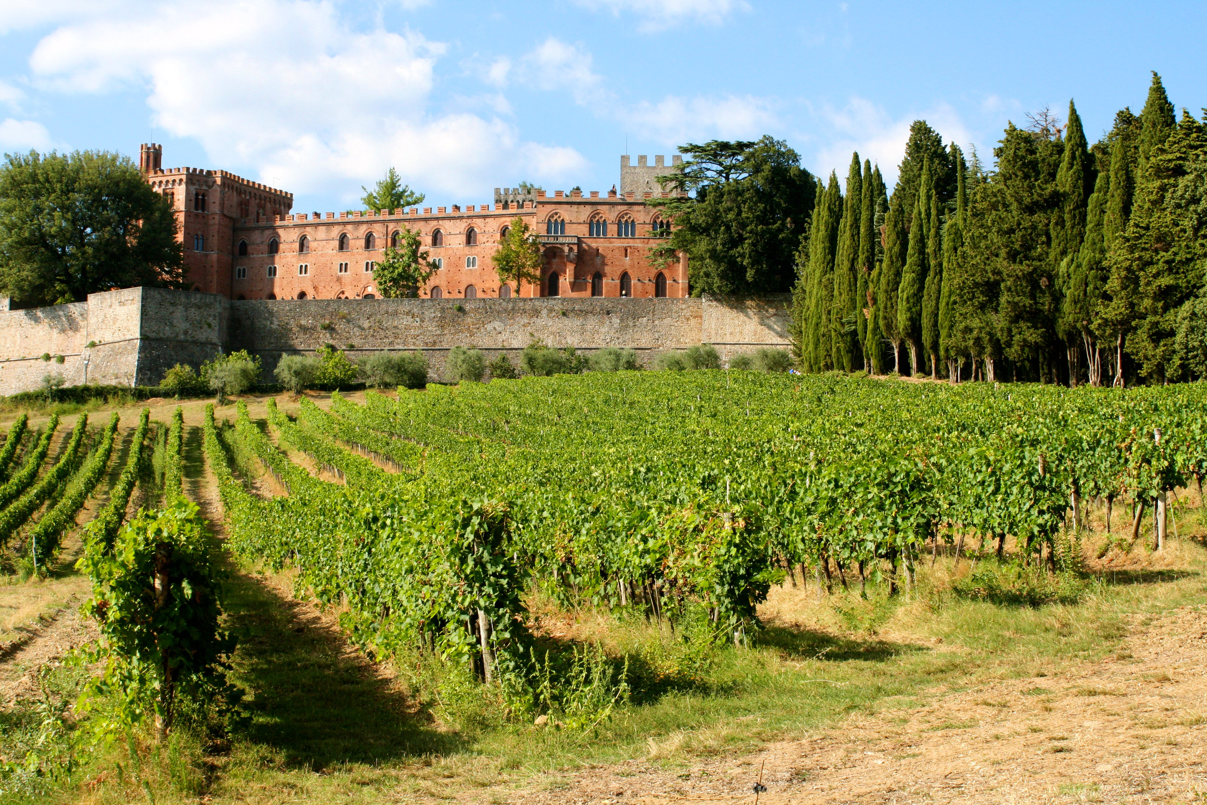 Private Tour and Wine Tasting at Castle-Wineries in Chianti