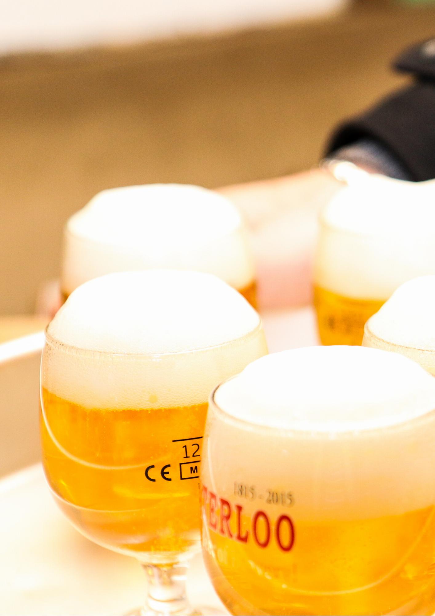 Beer and Food Pairing in Brussels