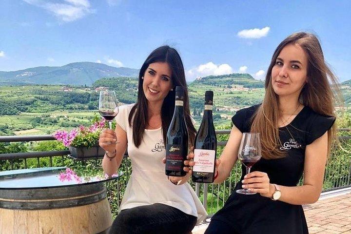 Wine Tasting in Verona in a Family-Run Winery
