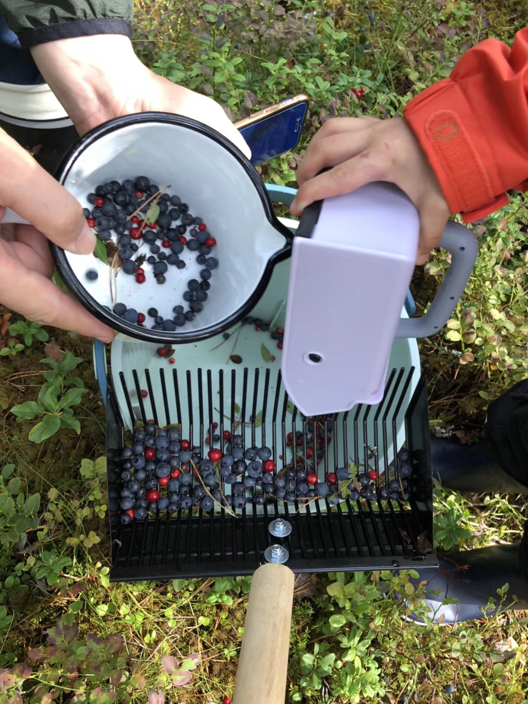 Private Country Home Visit with Berry Picking in Tervakoski from Helsinki, 5 hours