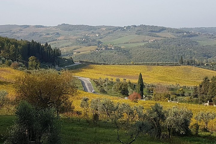 Wine tasting in Montepulciano and visit to Pienza, in Tuscany from Rome