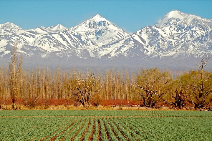 3-Days Getaway for Wine lovers - Mendoza Experience!