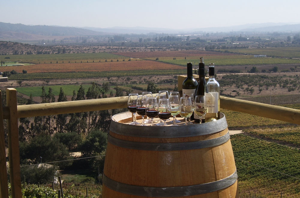 The Casablanca wine valley & the Pacific coast of Valparaíso