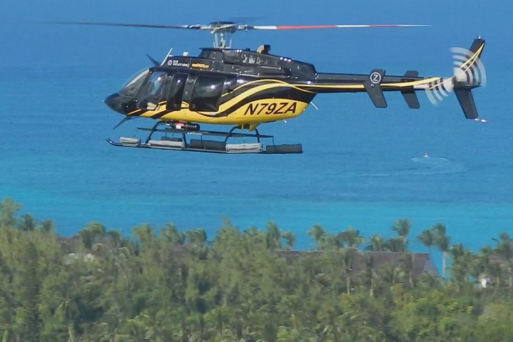 Rose Island Helicopter Tour