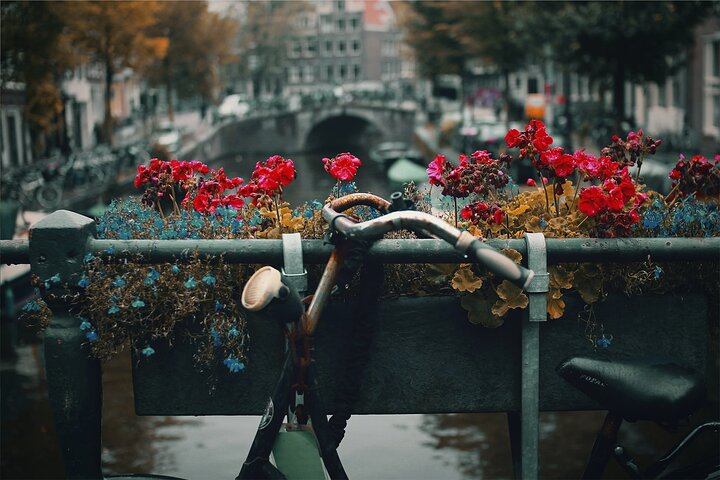 The romantic side of Amsterdam (Fall in love again) - Private tour with a local