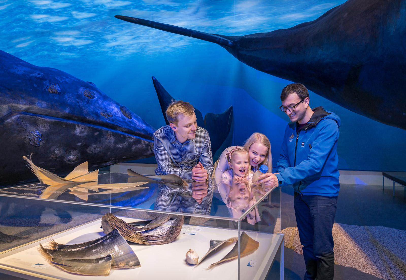 A joyous family experience