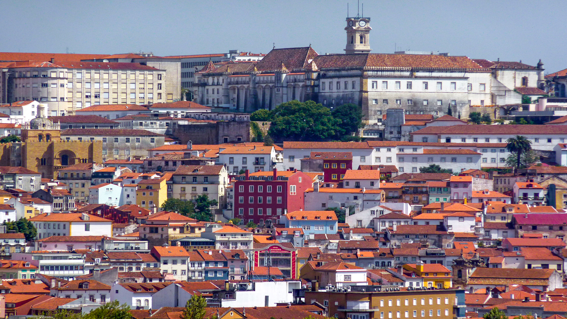 Private Coimbra Tour - UNESCO Site and Bairrada Wine-tasting with Typical Lunch