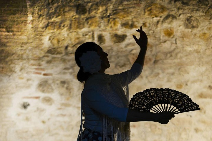 Flamenco, Tapas and Wine Tour: Best of Málaga in one evening