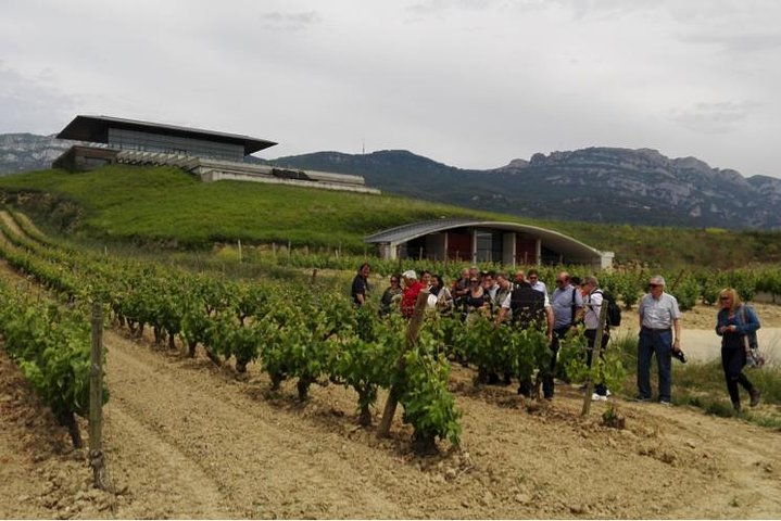 Private tour of La Rioja wineries with transport from San Sebastian