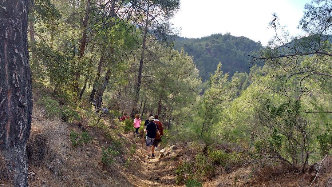 Enjoy an easy hike