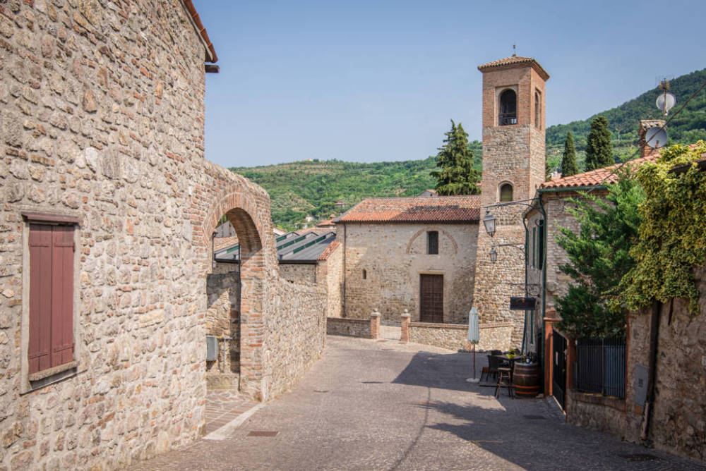 Cheese dairy farm, winery, olive oil mill, ham and sausage factory, Italian tradition full day visit and tasting private tour