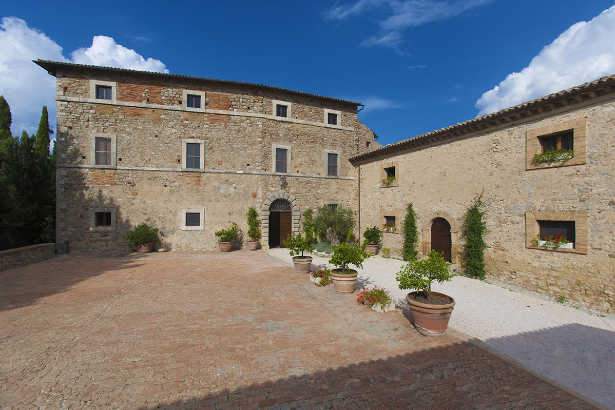 Wine tasting and lunch at Tenuta Salviano