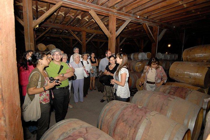 Semi-Private Premium Wine Tour at Santa Rita Winery