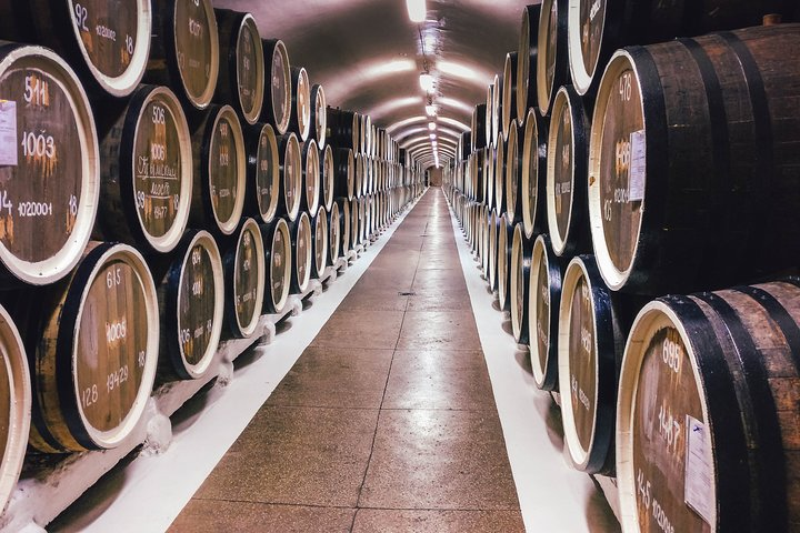 Ribera del Duero & Segovia: Wine tasting and Gastronomic Experience