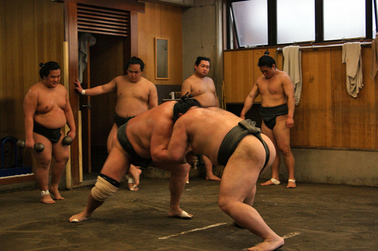 Catch sumo wrestlers in action
