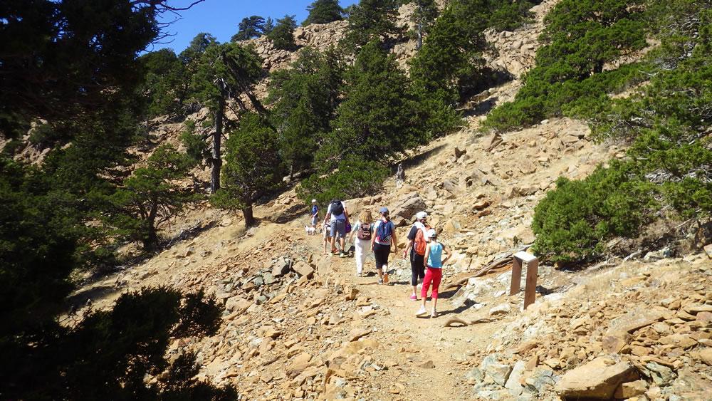 Sightsee along the path
