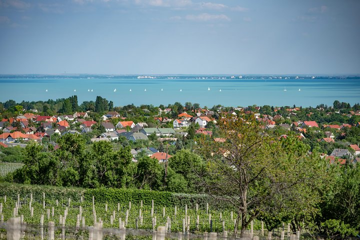 Lake Balaton Full Day Private Wine Tour