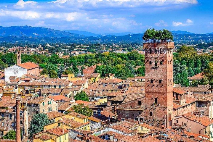 Exclusive Pisa & Lucca Wine Tour Plus Winery