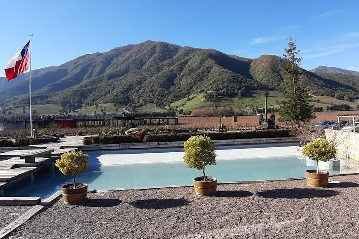Private Colchagua Valley wine tour all inclusive from Santiago