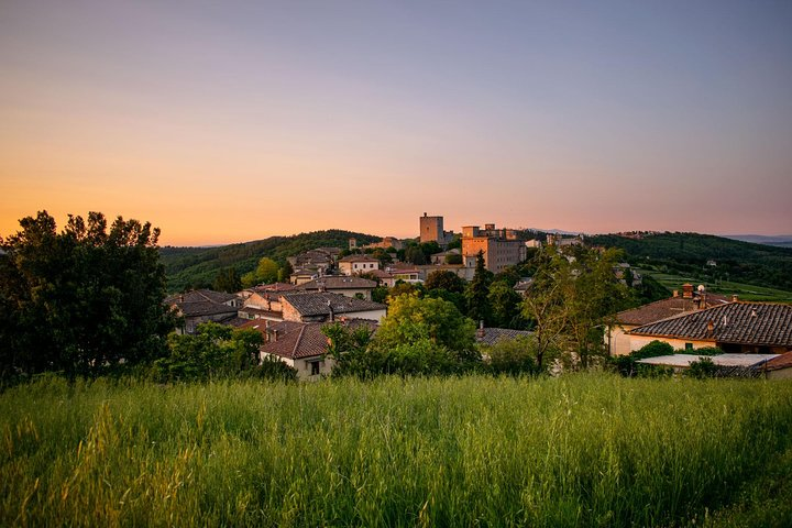 A TOAST OF WINE IN A CHIANTI FARM (Half a day tour)