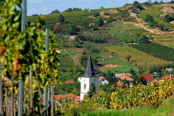 Private winetasting tour to Tokaj